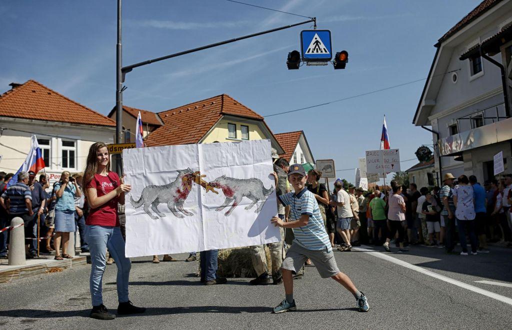 FOTO:SLS s peticijo za odstrel volkov lobira tudi na evropskem parketu