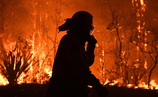 Gozdni požari v državi sicer niso redkost, ampak so po oceni znanstvenikov letos razmere precej hujše, kar bi lahko pripisali podnebnim spremembam. FOTO: Stringer/Reuters