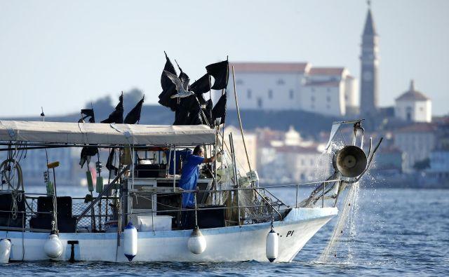 Proti slovenskim ribičem je bilo do zdaj sproženih že najmanj 753 postopkov, od tega je 513 postopkov hrvaške policije in 240 postopkov hrvaške ribiške inšpekcije. Ministrstvo za kmetijstvo, gozdarstvo in prehrano je za odvetniške stroške plačalo že 119.359 evrov. FOTO: Matej Družnik/Delo