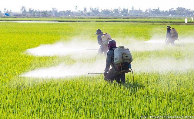 Francoska agencija za zdravje in okolje je napovedala, da s koncem decembra 2020 ne bo podaljšala dovoljenja za prodajo 36 izdelkom z glifosatom zaradi pomanjkanja podatkov o zdravstvenih tveganjih. (Fotografija je simbolična.) FOTO: Reuters
