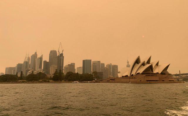 Od srede dalje bodo lahko temperature marsikje v Avstraliji presegle 45 stopinj, napoveduje državni Bureau of Meteorology. FOTO: John Mair/Reuters
