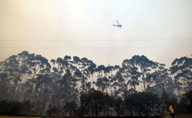 Vročinski val je še en opozorilni alarm glede globalnega segrevanja v Avstraliji. FOTO: Saeed Khan/Afp
