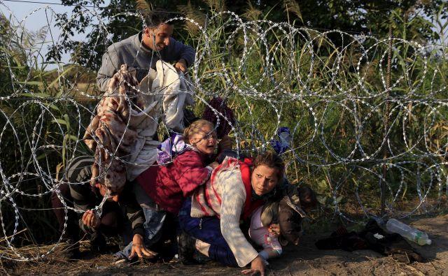 Prebežnike, ki na vsak način želijo v Evropsko unijo, ne ustavijo niti žične ograje na srbsko-madžarski meji.<br /> Foto Reuters
