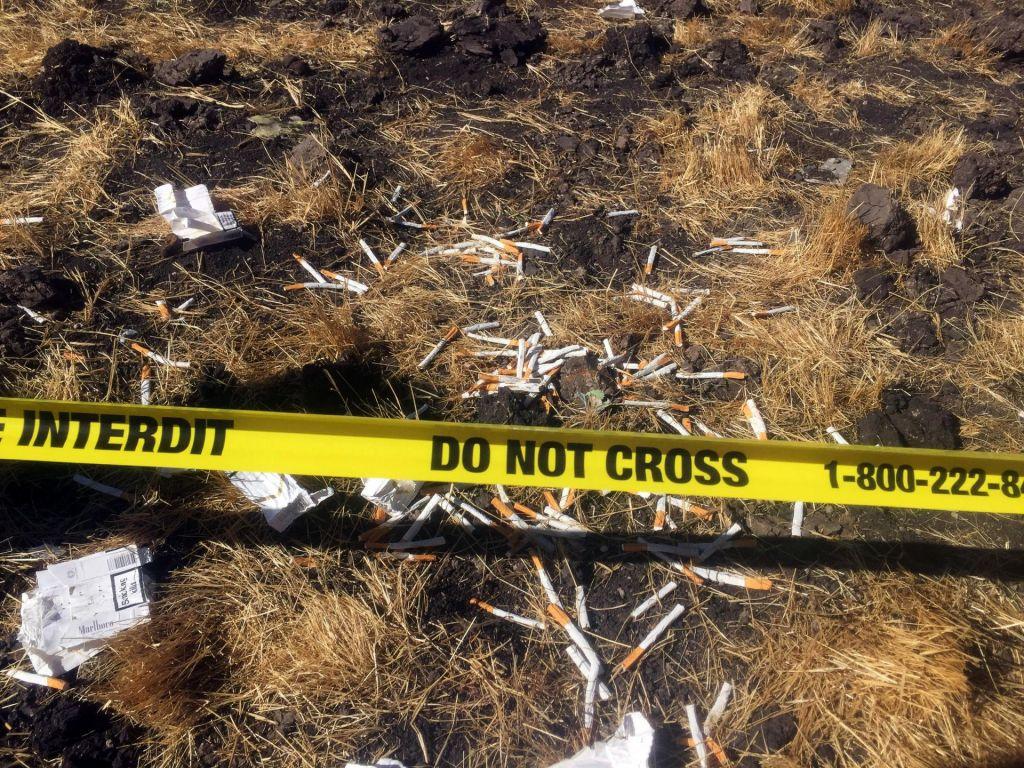 Letalska nesreča zahtevala najmanj pet življenj