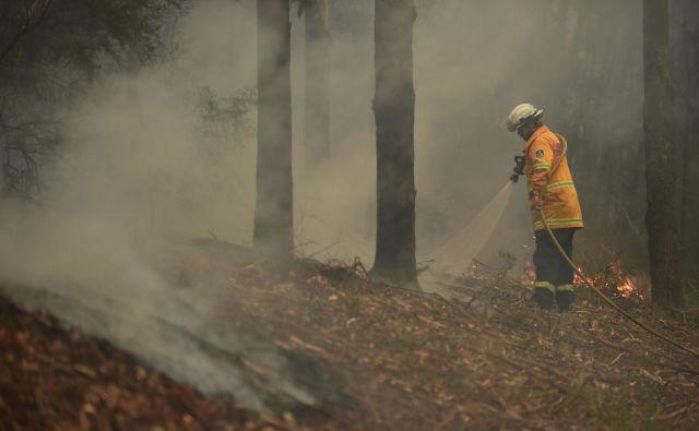 Številni znani so darovali in pozvali k darovanju sredstev za gasilce v Avstraliji. FOTO:Peter Parks/AFP