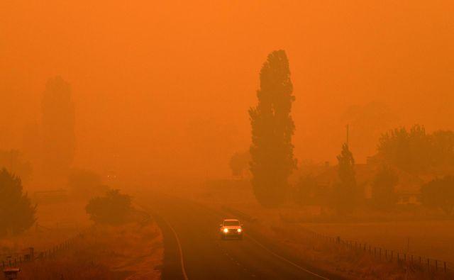 V avstralski prestolnici so zaradi onesnaženosti zraka zaprti muzeji, galerije, parki, uradi in univerze, na tamkajšnjem letališču pa so odpovedali številne lete.FOTO: Saeed Khan/AFP