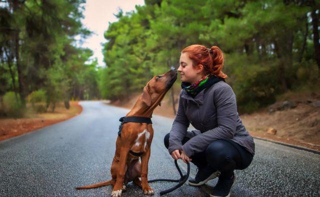 Pes nam je lahko v pomoč pri ponovnem spoznavanju naravnih zakonitosti, ki smo jih v okolju polnem drugih dražljajev pozabili ali prezrli. Foto: Shutterstock