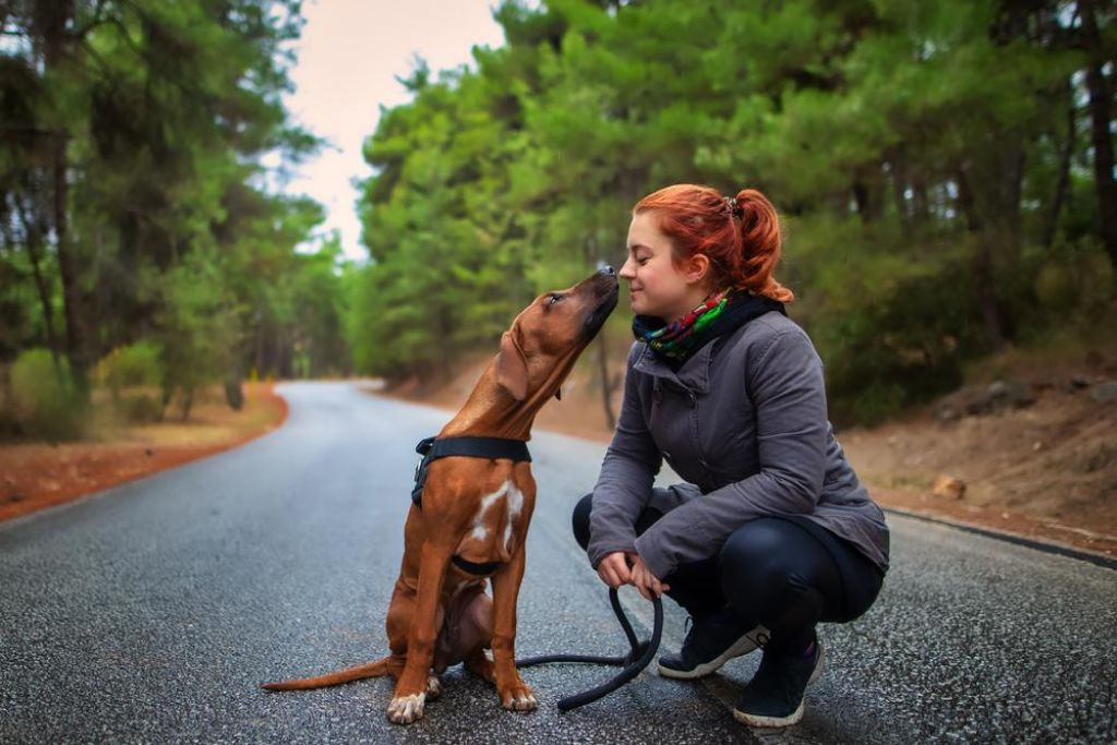 FOTO:Kako s psom postati bolj fit