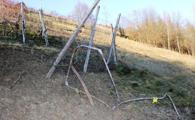 V ponedeljek so policisti zunaj naselja Vrh pri Boštanju med vinogradi našli mesto detonacije neznane eksplozivne naprave. FOTO: PU Novo mesto