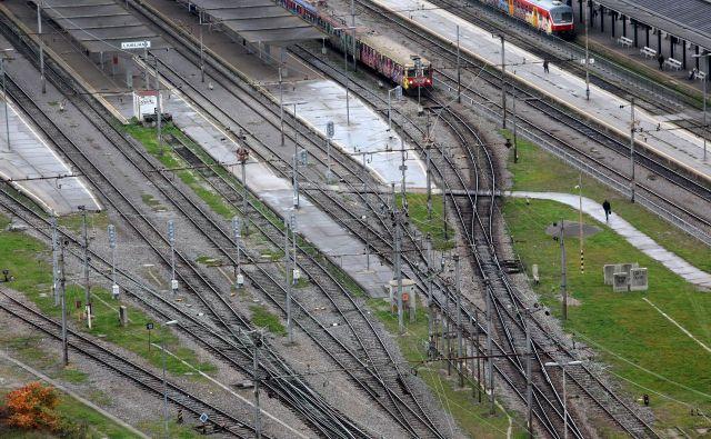 Govoriti bi morali o železniški prvi razvojni osi kot o vitalni hrbtenici Slovenije, ki bi jo morali razširiti do Kopra. Foto Mavric Pivk