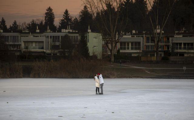Led na Koseškem bajerju. FOTO: Voranc Vogel