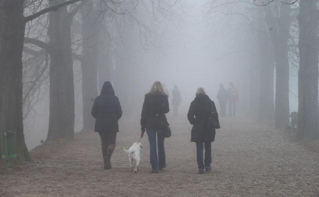 Zame je megla vedno priložnost, da bolj – kot gledam – poslušam. Slišim korake na ulici. Slišim psa, ki laja ...FOTO: Jože Suhadolnik/Delo
