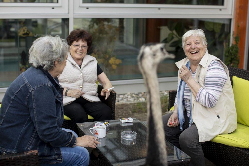Proti dvigu cen oskrbe v domovih za starejše