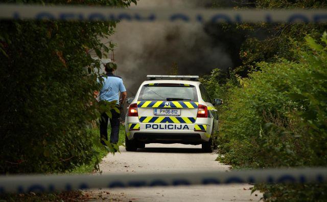 Policisti na delu. Fotografija je simbolična. FOTO: Jure Eržen/Delo