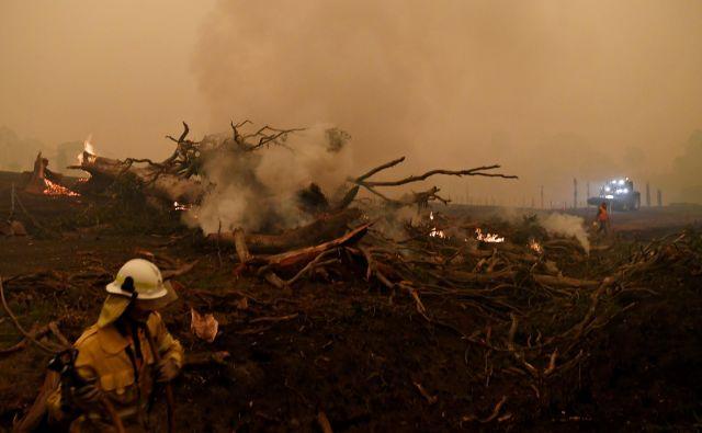 Ko so se pred več tedni požari v Avstraliji začeli, so jih precej časa v medijih v lasti Ruperta Murdocha povezovali z namernimi požigi kriminalcev. FOTO: Reuters