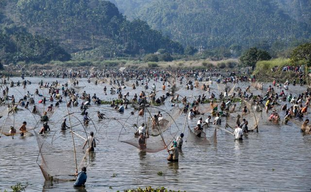 Vaščani sodelujejo v skupinskem ribolovu med praznovanjem praznika žetve Bhogali Bihu na jezeru Goroimari v Panbariju, približno 50 km od indijskega mesta Guwahati. FOTO: Biju Boro/Afp<br />