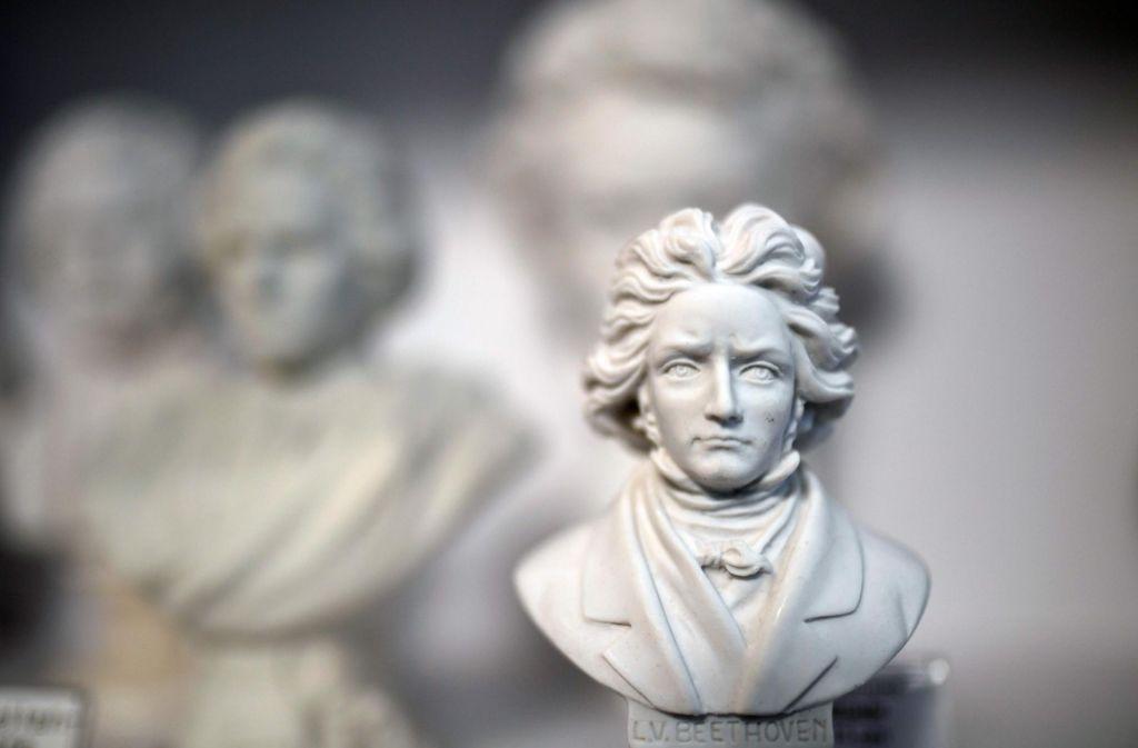 Zimski poklon velikemu skladatelju