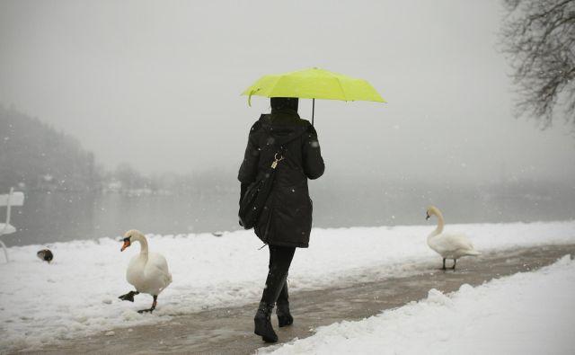 Po nižinah bo sprva deloma deževalo, deloma snežilo, popoldne ali zvečer pa večinoma snežilo. FOTO: Jure Eržen/Delo