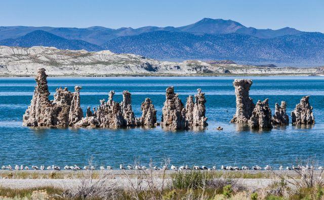 Nenavadna pokrajine je nastala na območju jezera Mono. FOTO: Shutterstock