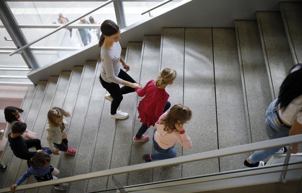 Ali potrebujemo novo Belo knjigo o vzgoji in izobraževanju?