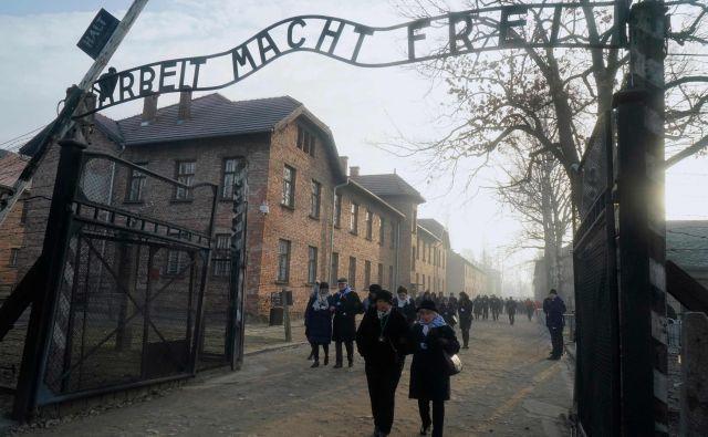 Preživeli so se še pred slovesnostjo sprehodili po taborišču. FOTO: Janek Skarzynski/AFP