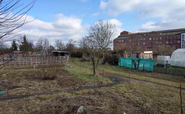 Na zemljiščih pri URI Soča so zdaj vrtički, ob pozidavi pa naj bi bile tu zdravstvene dejavnosti in varovana stanovanja. FOTO: Aleš Stergar/Delo