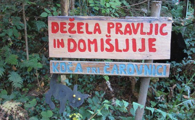 Vse to kaže na to, da je slovenski državljan izjemno vzdržljiv. Če bi se to dogajalo v bolj urejeni državi, bi jo take prakse že zdavnaj uničile. Fodokumentacija Dela