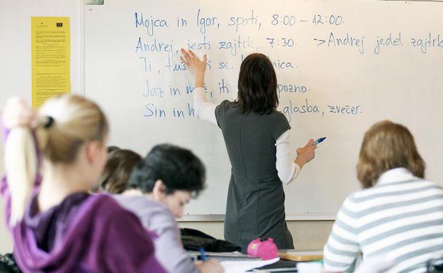 Bližina obeh slovanskih jezikov, slovenskega in srbskega, je pri učenju hkrati prednost in past. FOTO: Matej Družnik/Delo