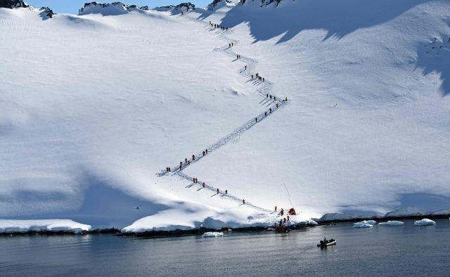 Bo kmalu padel nov rekord? FOTO: Johan Ordonez/AFP