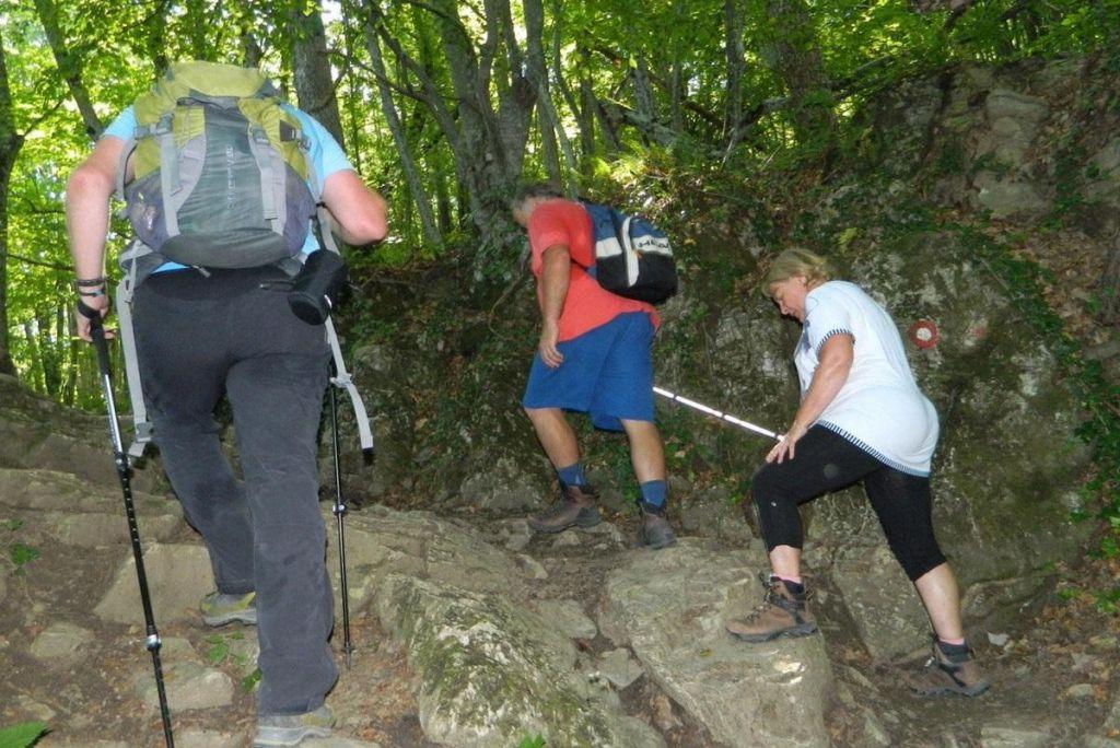 Slepi in slabovidni jemljejo pot pod noge na Slovenski planinski poti