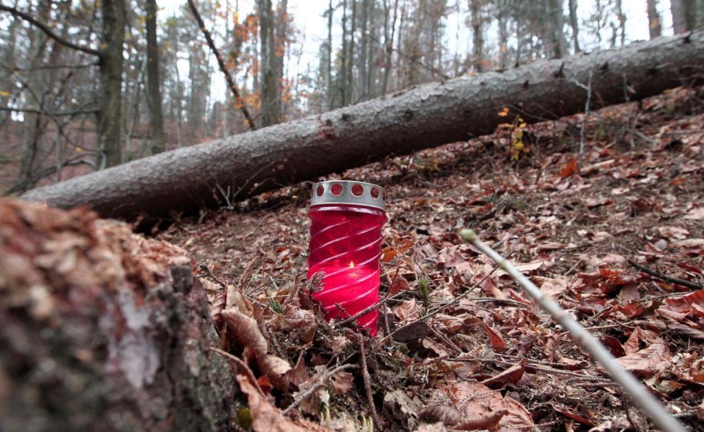 Pri podiranju drevesa se je smrtno ponesrečil