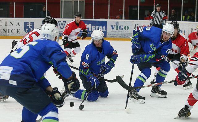 Slovenski hokejisti so z odliko izkoristili prednost domačega ledu na turnirju predkvalifikacij za uvrstitev na zimske olimpijske igre leta 2022 v Pekingu. FOTO: Jože Suhadolnik/Delo