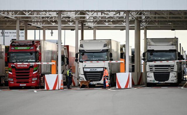 Če postane Velika Britanija »tretja« država, se bo čas prehoda meje za tovor lahko povečal tudi za 30 odstotkov. FOTO: Reuters