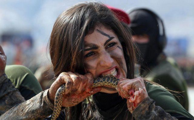 Iraška pešmerga Kurdinja grize surovo kačo med demonstriranjem veščin vojaškega preživetja na podelitvi diplom v kurdskem mestu Soran, približno 100 kilometrov severovzhodno od prestolnice iraške avtonomne kurdske regije Arbil. FOTO: Safin Hamed/Afp<br />