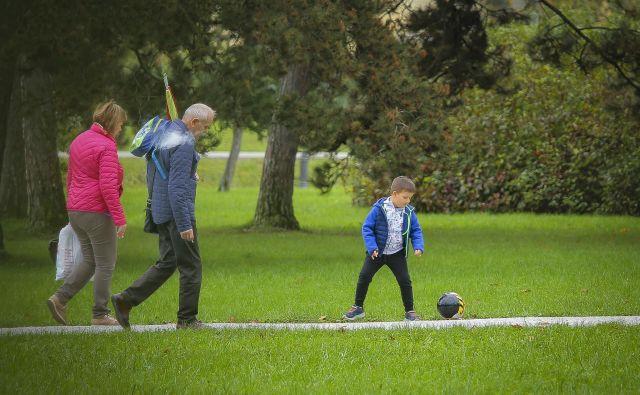 Zdus podpira predlog o uvedbi dneva slovenskega športa, a ne na isti dan, ko imamo mednarodni dan starejših. Foto Jože Suhadolnik