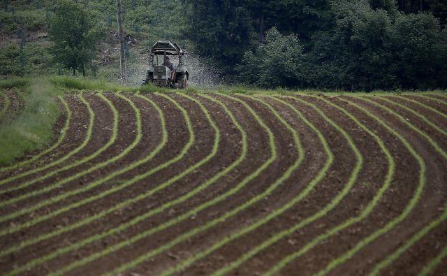 Kmetje v Evropski uniji so v 24 letih opustili približno 25 milijonov hektarjev obdelovalne zemlje. FOTO: Blaž Samec/Delo