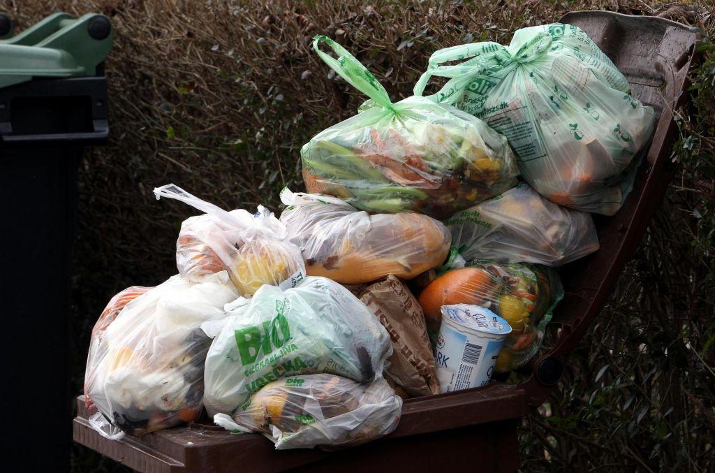 Marjetica Koper med stavko ne bo odvažala odpadkov