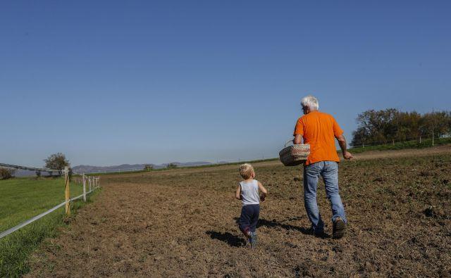Če hočemo jesti, moramo poskrbeti za zdravje tal. FOTO: Uroš Hočevar