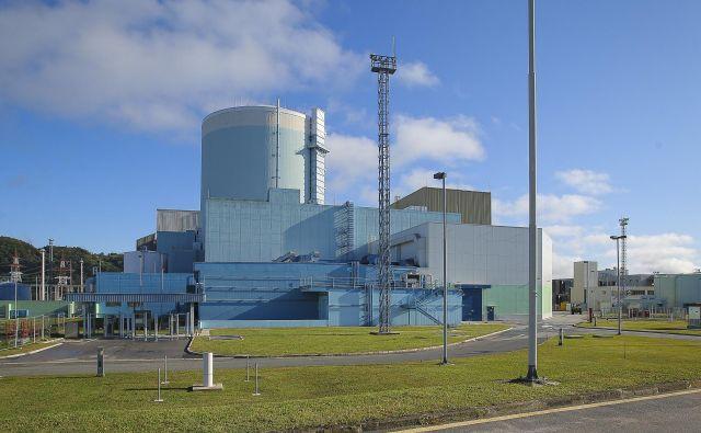 Jedrska elektrarna Krško. Kakšni so njeni vplivi na okolje? Foto Jože Suhadolnik