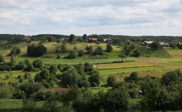 Mozaična kmetijska krajina, ki zagotavlja bivališča in gnezdišča številnim vrstam, izginja. FOTO: Damijan Denac