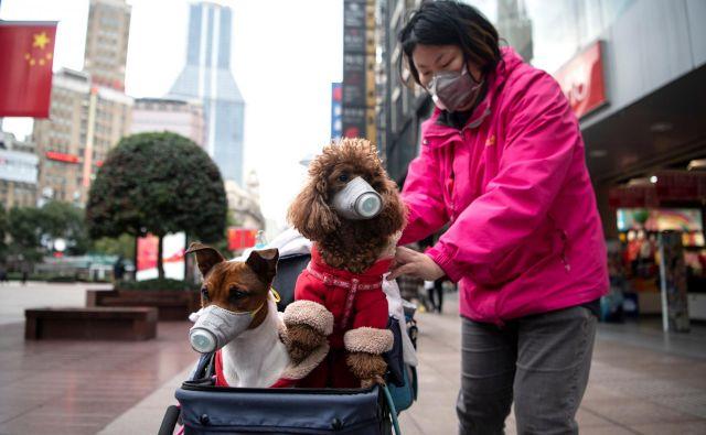 Ali bodo višje temperature pripomogle k izginotju virusa, kot se je zgodilo s sarsom, za zdaj ni znano. FOTO: AFP