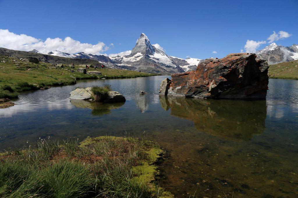 Švicarji na referendum za trajnostno kmetijstvo