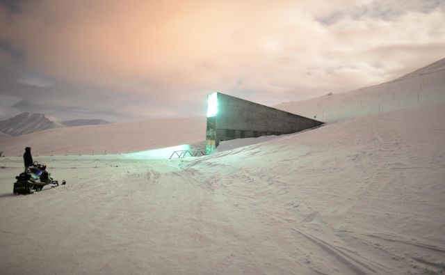 Svalbardska banka leži 1500 kilometrov od severnega tečaja in hrani največjo zbirko vzorcev semen rastlin iz skoraj vseh držav. FOTO: Arhiv banke Svalbard
