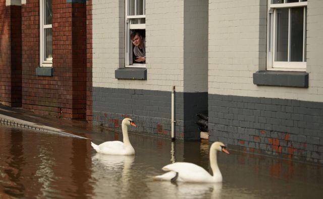 Utrinek iz mesteca Shrewsburyju v osrednji Angliji, potem ko je dež potisnil že tako visoke vodostaje po neurjih Ciara in Dennisu še višje in povzročil reko Severn, da se je razlila čez protipoplavne pregrade. FOTO: Oli Scarff/Afp<br />