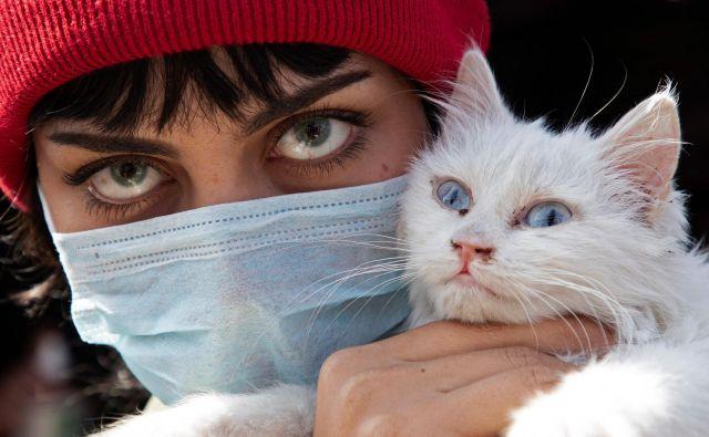 Portret Iračanke v zaščitni maski s svojo mačko v mestu Basra med protestom proti korupciji v iraški vladi. Masovni shodi potekajo v Iraku že od oktobra, protestniki pa zahtevajo predčasne volitve in neodvisnega premierja ter odgovornost za korupcijo in nedavno prelivanje krvi. Medtem je država potrdila prvo infekcijo s koronavirusom v svetem mestu Najaf, kar je povzročilo paniko. FOTO: Hussein Faleh/Afp