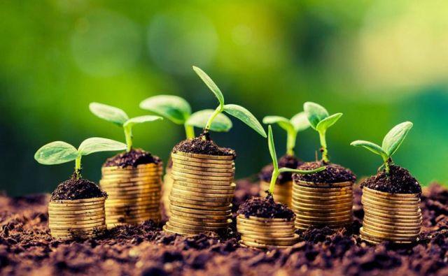 Okolje nizkih obrestnih mer bankam omogoča le nizke marže.<br /> FOTO: Shutterstock