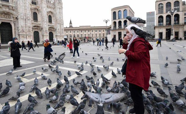 V izpraznjenem središču Milana v času epidemije koronavirusa kraljujejo golobi. Foto: AFP