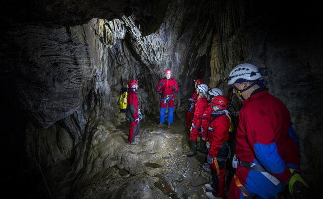 V Deževni jami raste siga s hitrostjo en centimeter na trideset let; povprečje je en centimeter na sto let. FOTO: Borut Lozej