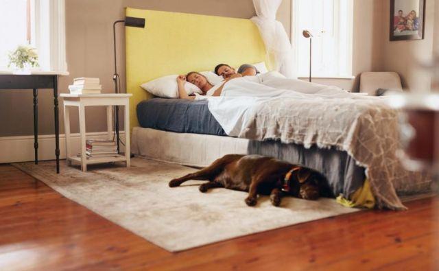 Danes je svetovni dan spanja. FOTO: Shutterstock