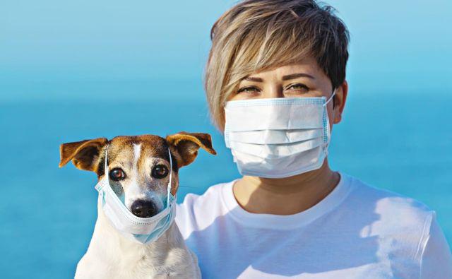 Ni dokazov, da bi se covid-19 prenašal na hišne ljubljenčke. FOTO: Shutterstock